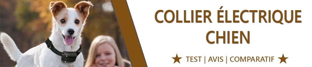 Collier électrique chien : Guide et comparatif pour faire le bon choix dans de collier électrique